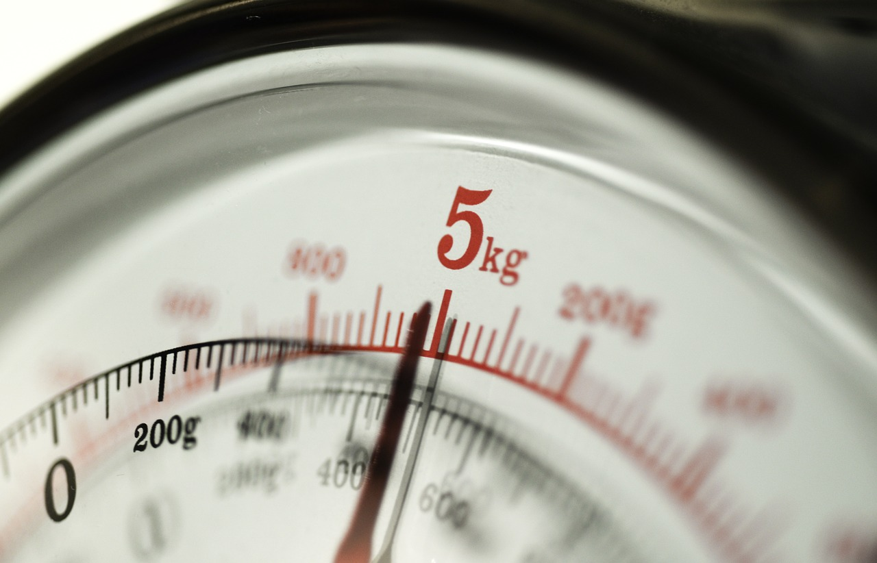 Wagi gastronomiczne – wagi elektroniczne Toruń. Wagi mettler toledo